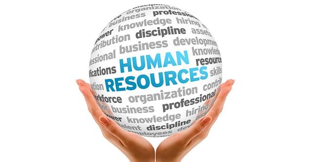 Консультирование в сфере HR