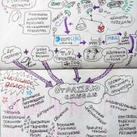 Графическая фасилитация для повышения эффективности команды