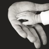 Семья как целостная система