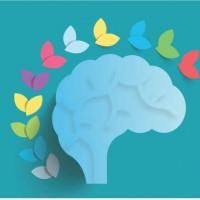 Как развить эмоциональный интеллект?