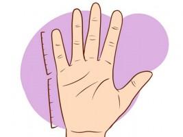Как узнать свою стихию по форме руки?